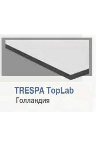 Рабочая поверхность ЛАБ-PRO РП 60.60 TR (TRESPA TopLab)